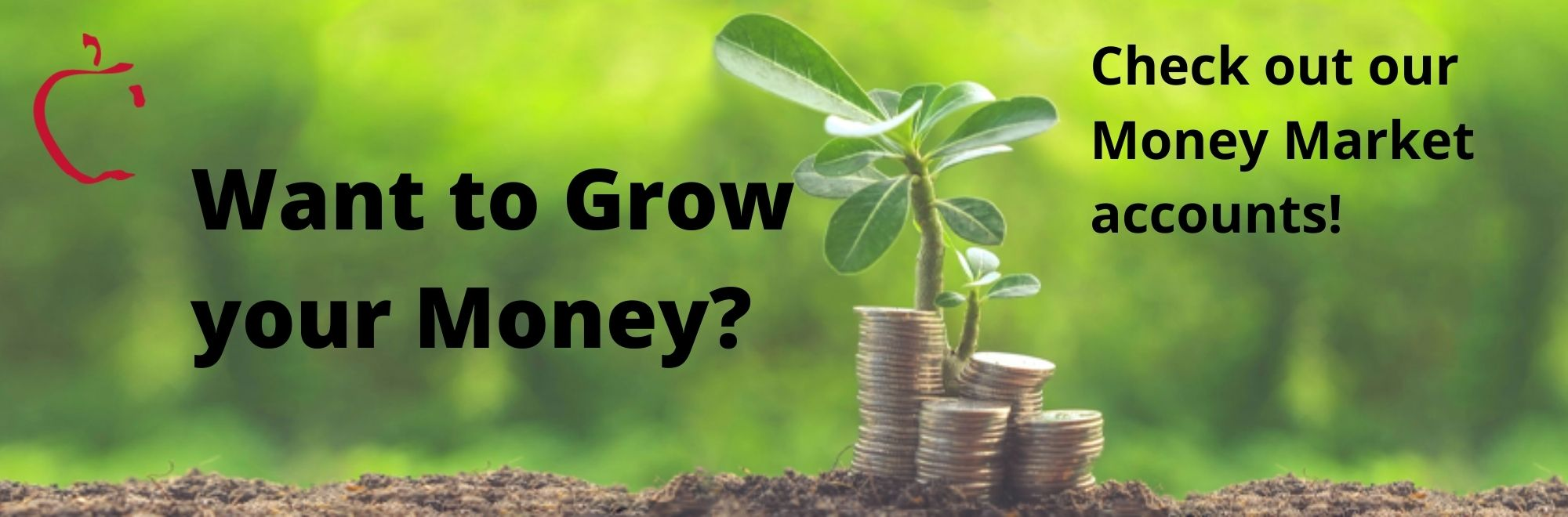 Want to grow your money? Check out our Money Market accounts!